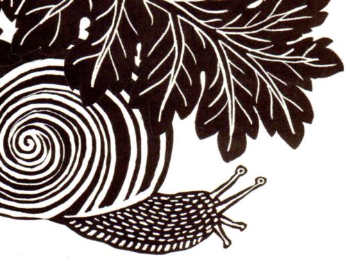 Histoire d'un escargot qui découvrit l'importance de la lenteur – Lluis Sepulveda